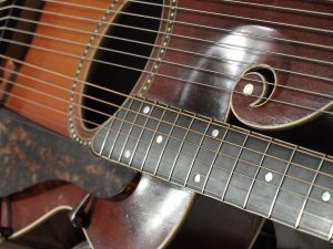 the beautifully carved scroll of a Gibson Style U harp guitar